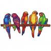 Игривые Попугаи 5 в 1